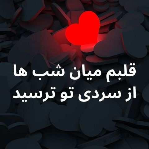 دانلود آهنگ محمد حشمتی قلبم میان شب ها از سردی تو ترسید